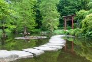 Chinesisches Gr_n im Westfalenpark