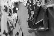 140309-0053 Beelitz Heilst_tten