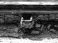 140309-0010 Beelitz Heilst_tten