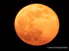 Mond1-IMG_1050