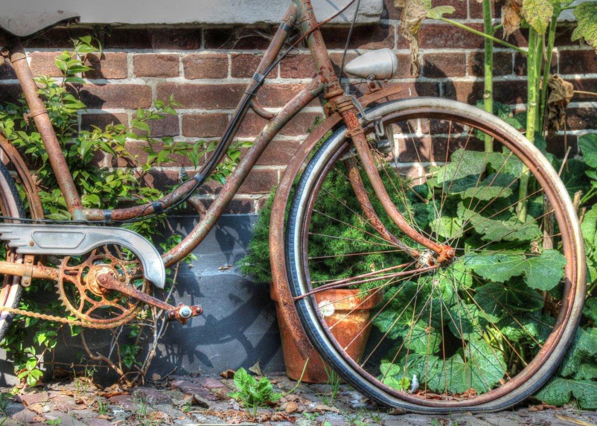 21 - Vergessenes Fahrrad (20140915_121748_niederlande_walcheren_tonemapped_malerisch_ausschnitt_30prozent)