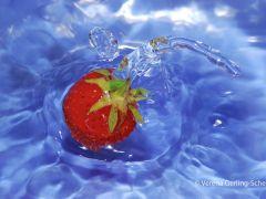 3-VGS-Wasser-3335b-2